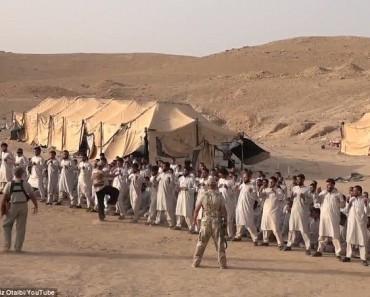 Откуда взялся «ИГИЛ» и что там вообще происходит
